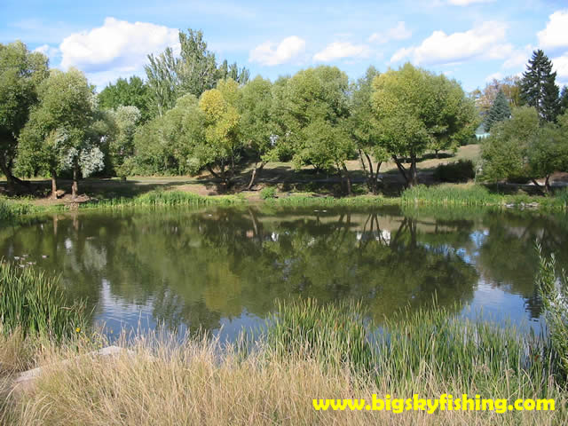 Whitefish pictures duck pond in riverside park in for Whitefish montana fishing