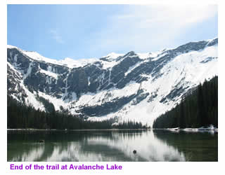 Avalanche lake in glacier national park fishing hiking for Fishing in glacier national park
