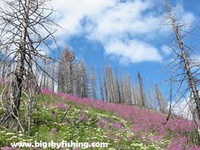 Hiking the Loop Trail in Glacier National Park