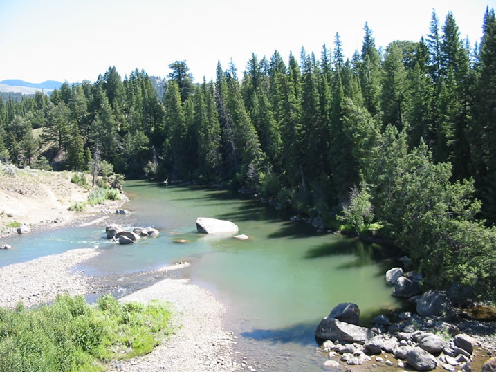 The Lamar River at end of Lamar Canyon in Yellowstone National Park