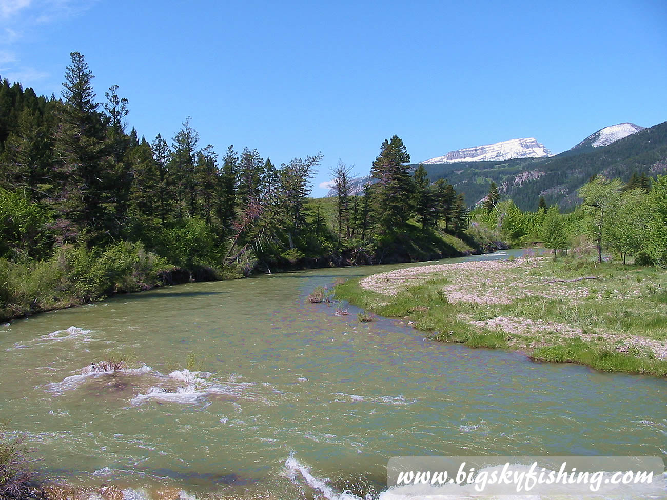 Dearborn river near rocky mountain front in montana for Big fish dearborn