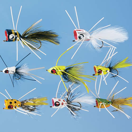Fly assortments or how to save money get a free flybox for Fishing poppers for bass