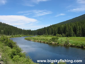 The Yaak River Scenic Drive In Northwest Montana Information