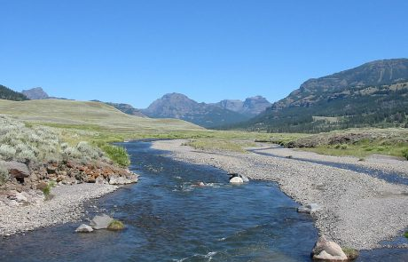Soda Butte Creek in Yellowstone National Park