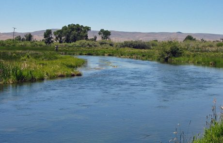 Beaverhead River at Poindexter Slough in Southwest Montana