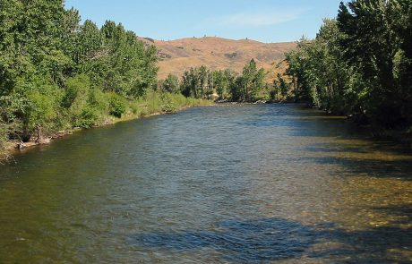 Bitterroot River in Montana, downstream from Connor