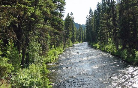 East Fork Bitterroot River