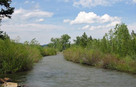 The Upper Blackfoot River