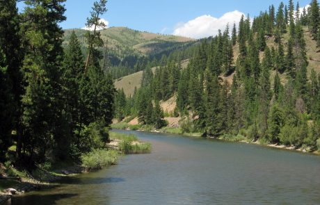 Blackfoot River in the Blackfoot River Corridor
