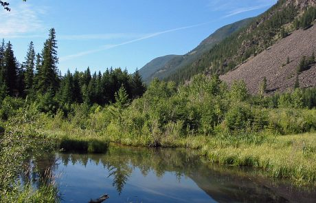 Beaver Pond along the Boulder River