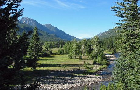 Open Meadow along the Boulder River