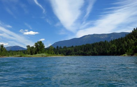 Downstream from Columbia Falls on the Main Stem of the Flathead River