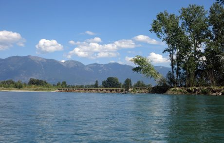 Flathead River in Northwest Montana