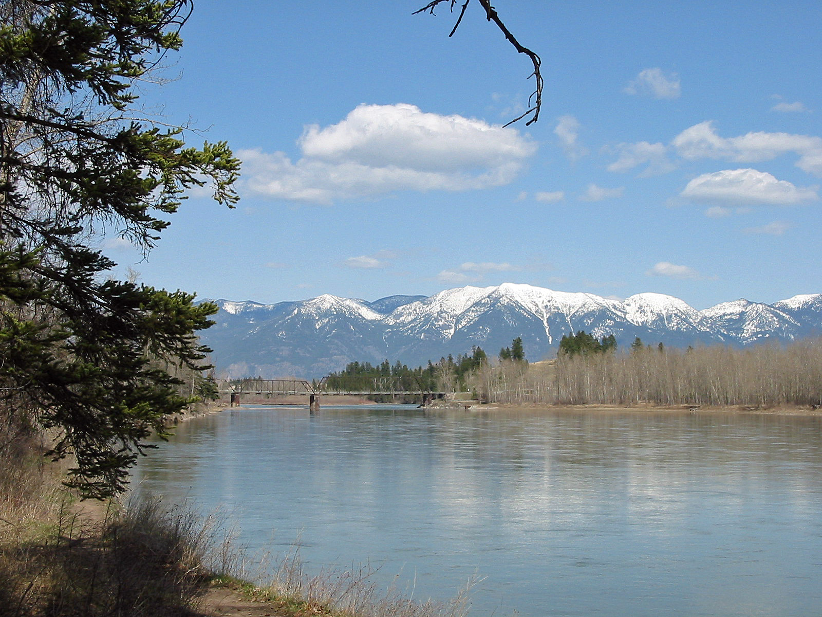The Flathead River In Montana Detailed Fishing And