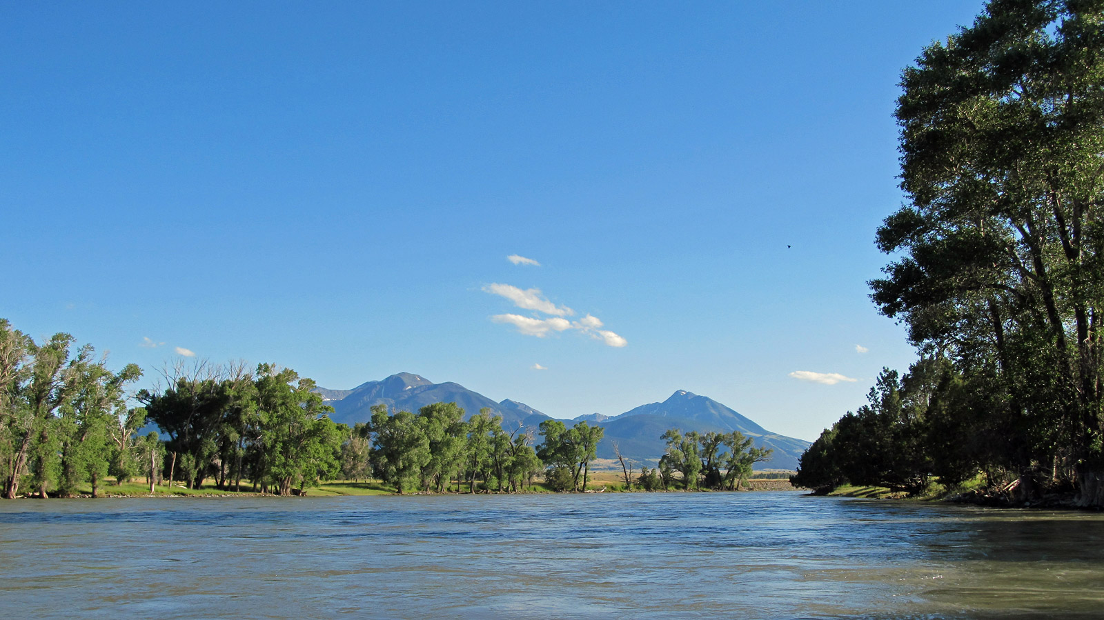 Yellowstone River in Montana | Detailed Fly Fishing