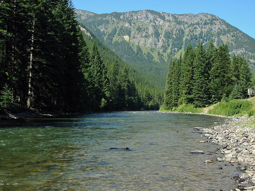 The Gallatin River in Montana : Fly Fishing Information ...