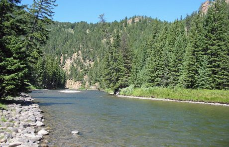 Gallatin River in Montana
