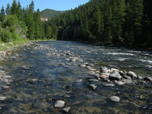 The Gallatin River in Montana