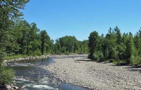 Lower Gallatin River in Montana
