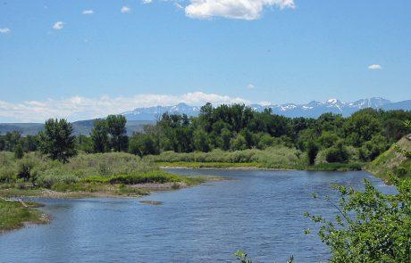 Jefferson River in Montana