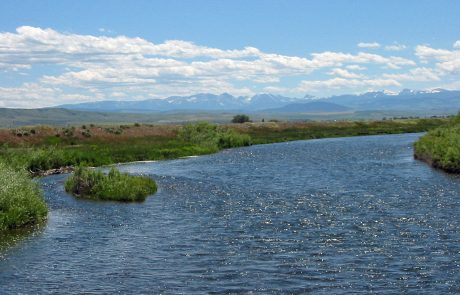 The Lower Madison River in Montana