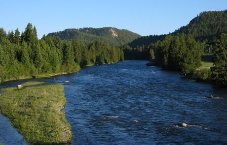 The Madison River in Montana