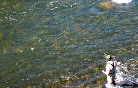 Fly Fishing at Raynolds Pass Fishing Access Site