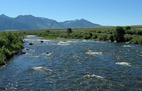 The Madison River Downstream from Raynolds Pass Fishing Access Site