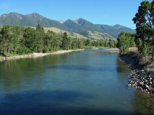 Yellowstone River at Mallard's Rest