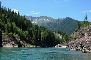 Middle Fork Flathead River