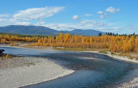 North Fork Flathead River during Autumn colors