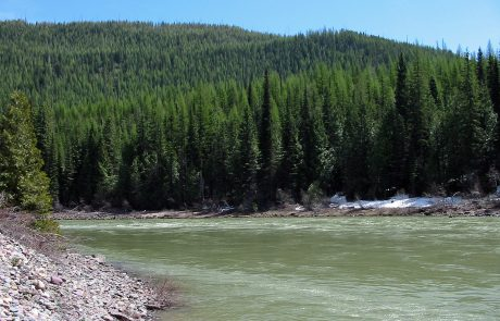 North Fork Flathead River in Northwest Montana