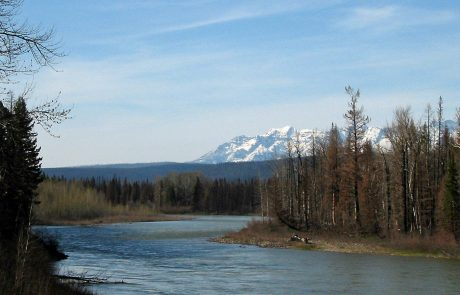 North Fork Flathead River near Polebridge, Montana