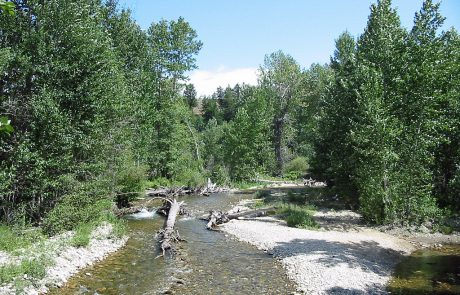 Rock Creek in Southern Montana