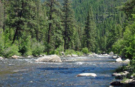 Rock Creek near the Dalles