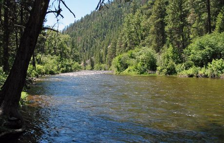 The Middle Section of Rock Creek in Montana