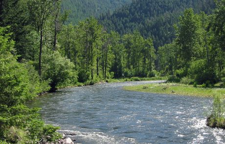 Lower Rock Creek in Montana
