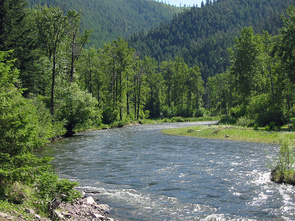 rock creek The montana rock creek website with thorough river descriptions, current fly fishing reports, suggested fly patterns, videos and typical catch photos.