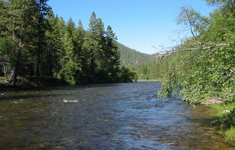 Middle Section of Rock Creek in Montana