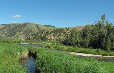 Upper Rock Creek in the Phillipsburg Valley