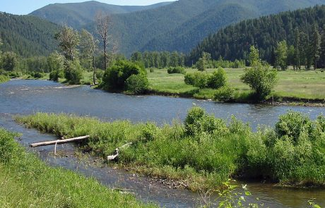 Lower Rock Creek in Montana