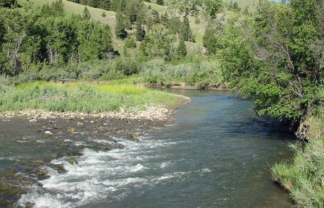 Ruby River in Montana