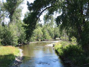 Shields River in Montana
