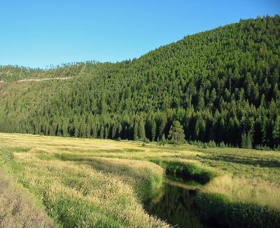 Thompson River in Northwest Montana
