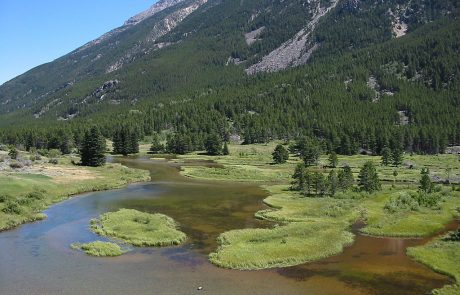Slower Water on West Rosebud Creek in Montana