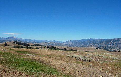 Yellowstone Blacktail Plateau
