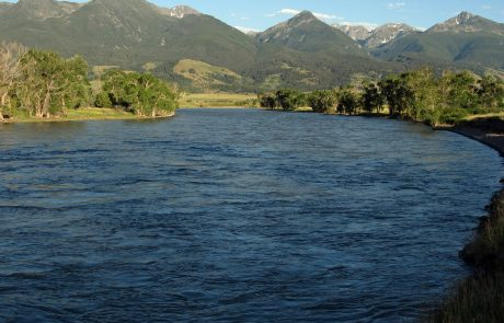 Yellowstone River at Mallard's Rest Fishing Access Site