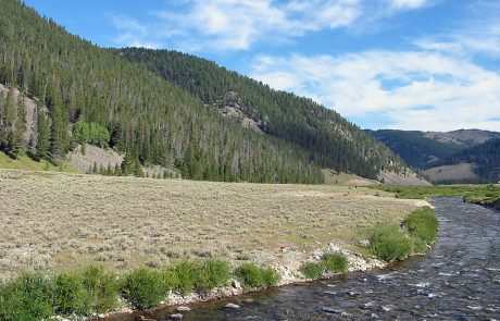 Gallatin River in Yellowstone National Park