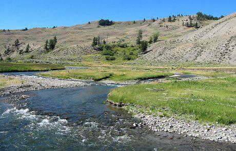 Gardner River in Yellowstone National Park