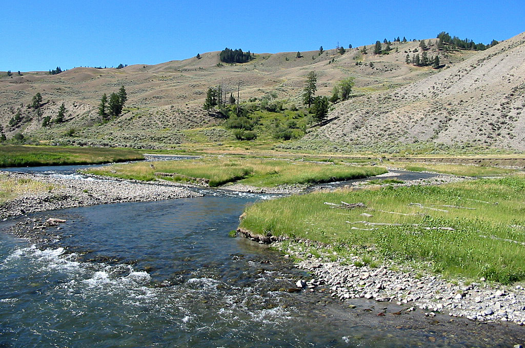 Gardner River in Yellowstone National Park
